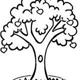 drzewo-lisc-do-wydrukowania (1)