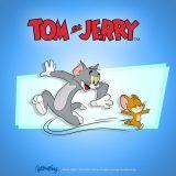 Tom-Jerry-bajka tapety (10)