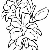 kwiaty kolorowanki do druku dla dzieci (11)