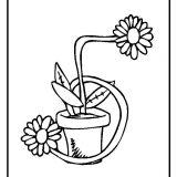 kwiaty kolorowanki do druku dla dzieci (12)