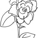 kwiaty kolorowanki do druku dla dzieci (20)