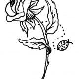 kwiaty kolorowanki do druku dla dzieci (22)
