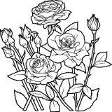 kwiaty kolorowanki do druku dla dzieci (7)