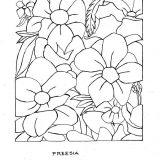 kwiaty kolorowanki do druku dla dzieci (9)