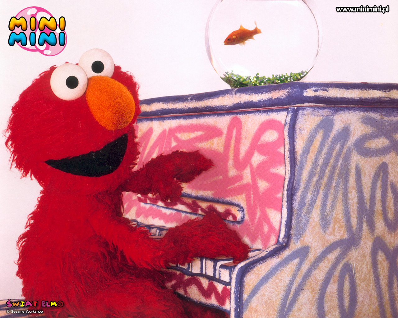 Elmo Tapety Wallpapers 18 Fd
