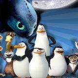 pingwiny z madagaskaru (21)