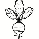 warzywa- kolorowanki (2)