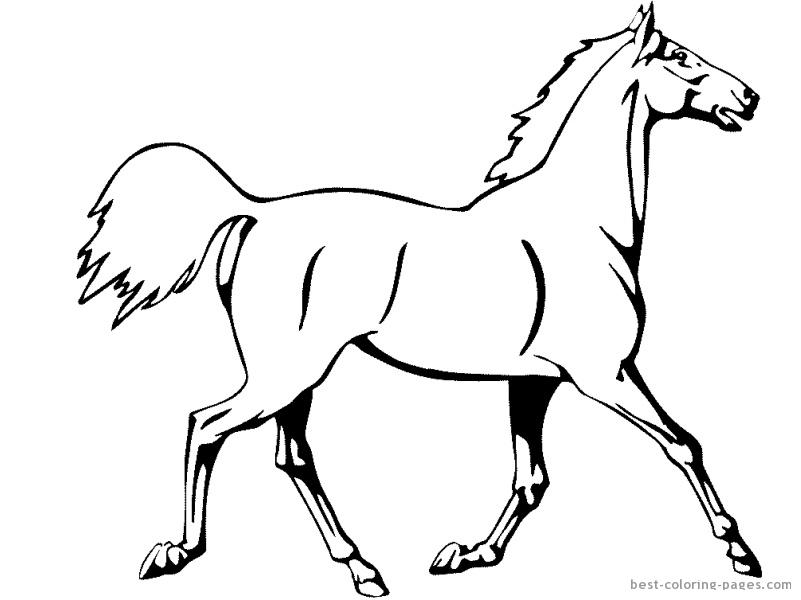 Kolorowanki Konie Kucyki Obrazy Do Wydrukowania