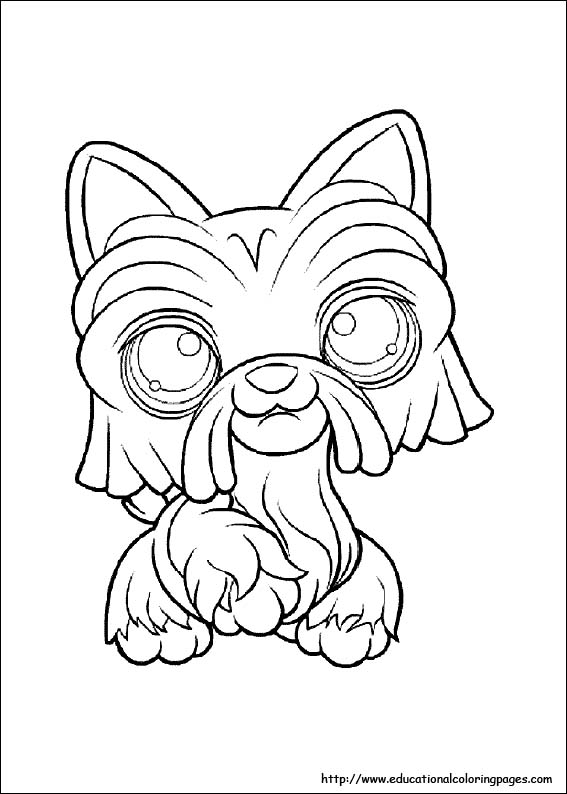 Pet Shop Kolorowanki Do Wydrukowania Fd