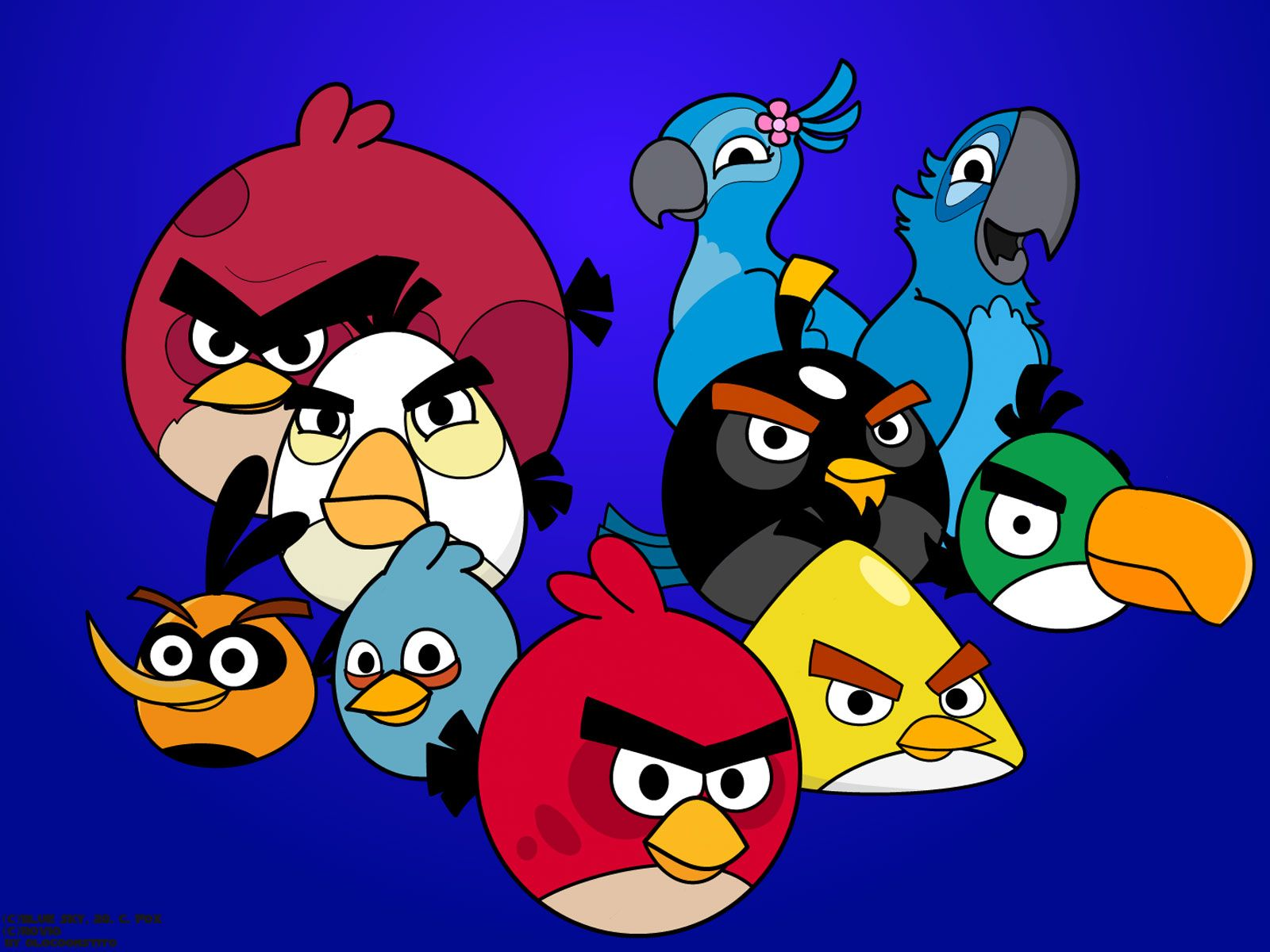 Angry Birds HQ Wallpapers
