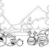angry-birds (12)