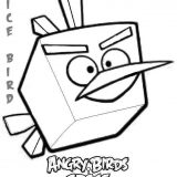 angry-birds (17)