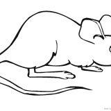 myszka-jez-kolorowanki-do-druku (4)