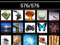 76 new elements