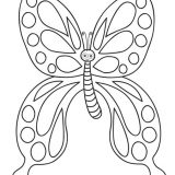 butterfly_coloring_pages