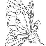 kolorowanki-motyle