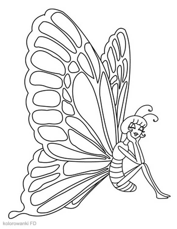 Kolorowanki Motyle Fd