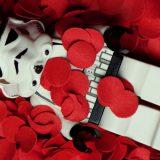 tapety-lego-nowe (19)
