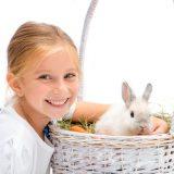 male-zwierze-dla-dziecka (1)